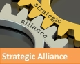 Where We Can Help Strageic Alliance1.jpg